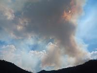 de eerste bosbrand onderweg