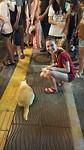 Eerste foto in Thailand, met kat & wallen