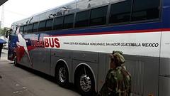 Tica bus, vervoer door Midden Amerika