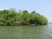 Kaneel eiland