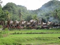 Traditionele huisjes in Tana Toraja