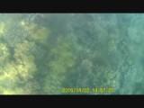 Pulau Kapas - Film 7