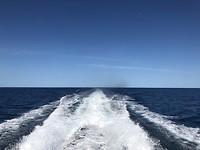 Uitzicht vanaf de boot