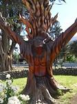 Wat je van een dode boom kunt maken 3 afbeeldingen in een boom