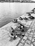 De schoenen op de kade van de Donau