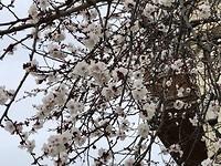 Het wordt lente!!!!
