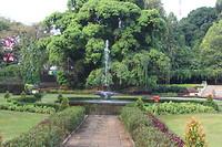Botanische tuin