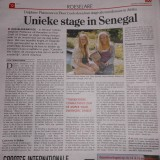 Het krantenartikel