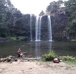 Whangãrei falls