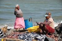 Vismarkt