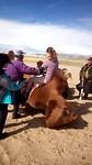 Mongolië / Deel Twee