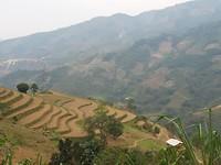 Terrassen tussen Sa Pa en Lao Cai