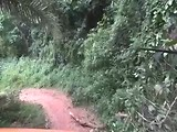 Jungle route Togo part 1