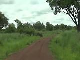 Pendjari National Parc