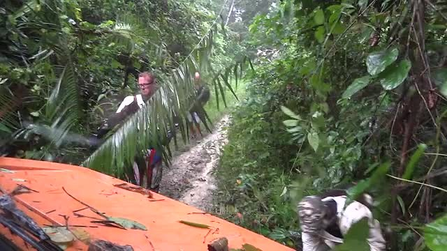 Op weg naar de chimpansees, Mariemberg Kameroen