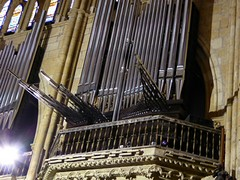 Orgel kathedraal