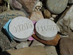 De stenen