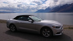 Ford Mustang in Teton Park