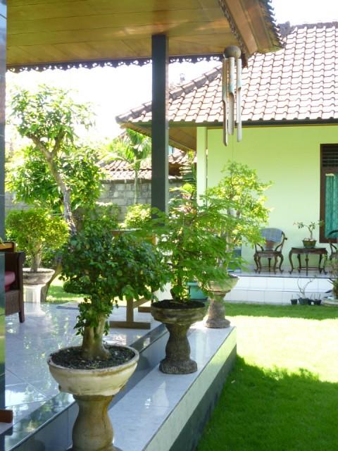 Terras achter huis let op klingklung van bamboe foto george molenaar s reisblog - Terras eigentijds huis ...