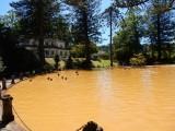 Thermaal bad in Parque Terra Nostra te Furnas