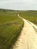 Groene route