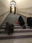 De heilige trappen