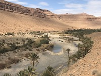 Langs de rivier de Ziz