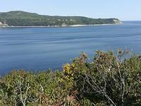 Baai bij Tadoussac