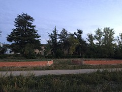 IMG_2893