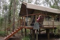 Onze tent