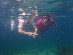 Een dagje snorkel - Bocas del Torro