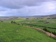 Uitzicht van gehele melkveebedrijf aan de kust