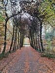 Wandeling Trage Tocht Enschede 1 van 13 km