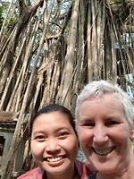 Vietnam heritage boom bij pagode