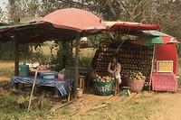 Ananas tijd. Worden langs de weg in grote hoeveelheden aangeboden