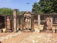Oude boeddhabeelden in Polonnaruwa.