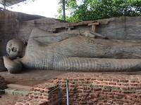 Grote liggende boeddha van 15 m.