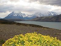 153 Torres del Paine (28)