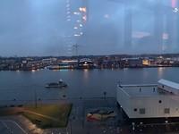 Vis aan het IJ; Amsterdam Noord