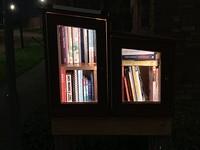 Minibieb at night