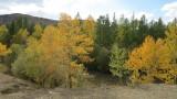Midden Siberie. Herfst