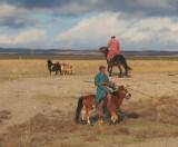 Altai-Arvajheer: herders.