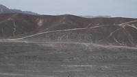 Geogliefen in de omgeving van Nazca