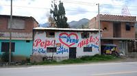 Peruaanse verkiezingen, aparte kandidaat