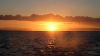 Vaarwel Galapagos