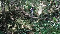 Tocht door de jungle
