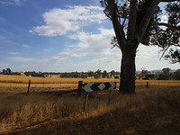 Onderweg van Halls Cap naar Melbourne