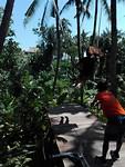 Sarah op de schommel door het oerwoud