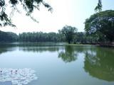 Prachtige waterspiegel