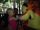 Dát is een grote tijgertje!!